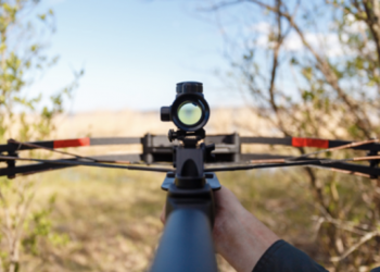 7 Best Youth Crossbows to Have Fun With in 2020