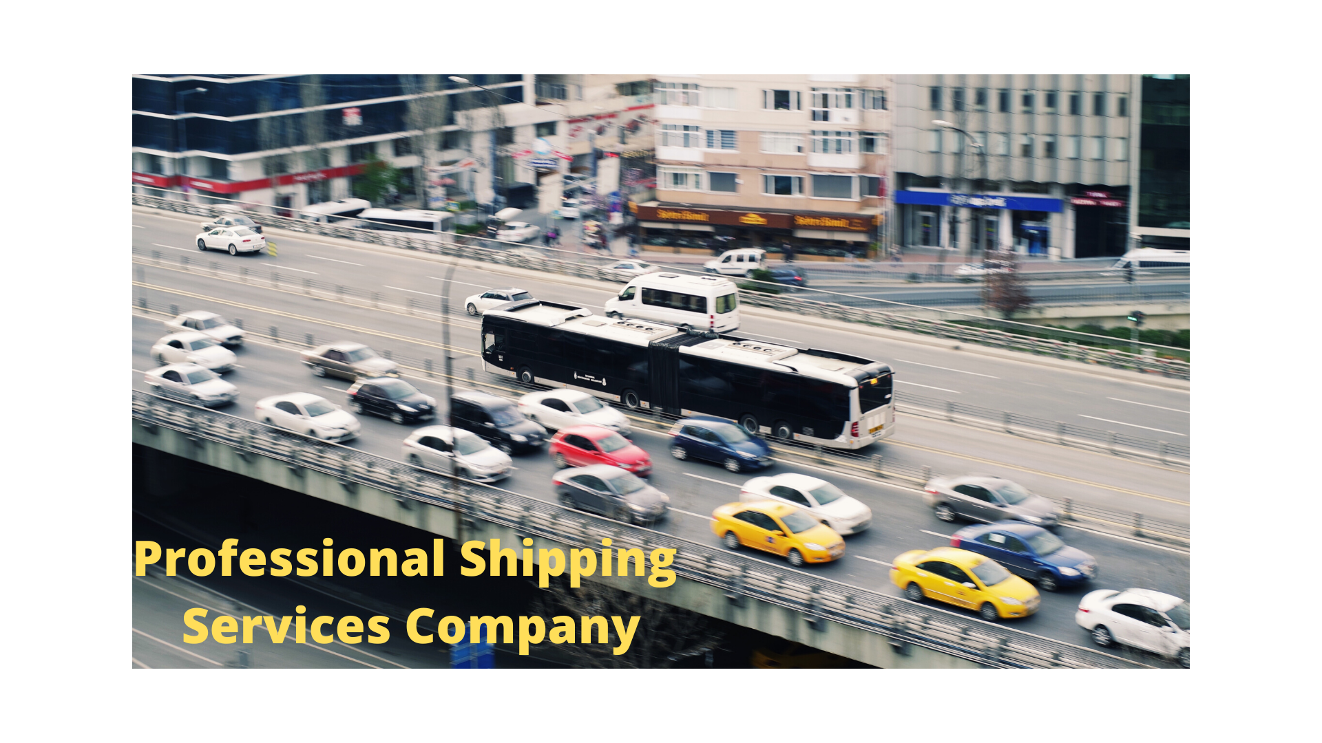 Professional Shipping Services Company