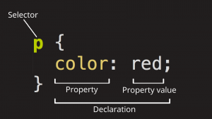 CSS: A Beginner's Guide To Start