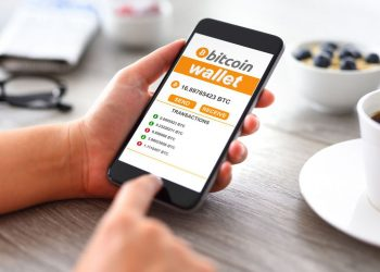Crucial Features To Consider For A Reliable Digital Wallet!